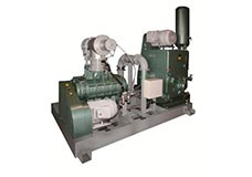 Rotary Piston Pumping Systems